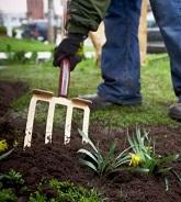 garden preparation_small